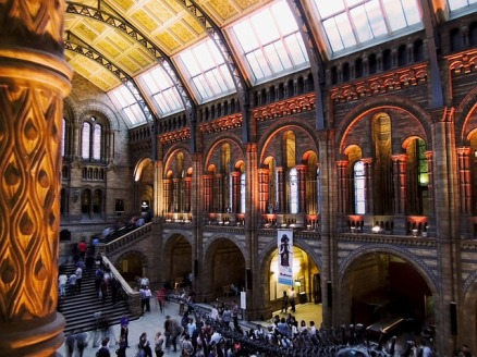 natural-history-museum-545185_640