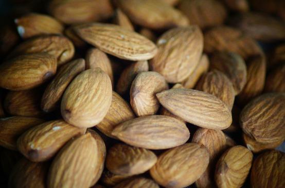 almond-140919_1280
