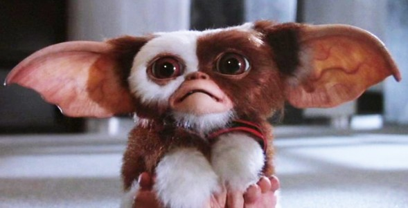 gremlins-photo-54bceaca95764