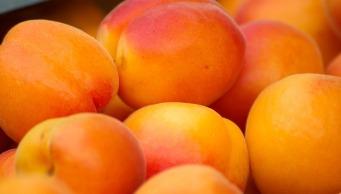 alt-quels-fruits-secs-à-consommer-en-hiver
